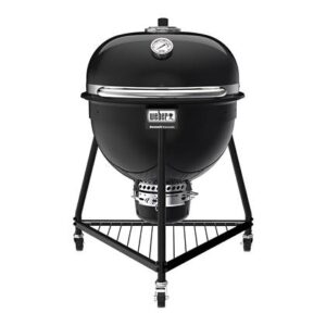 Houtskoolbarbecue Zwart Porselein